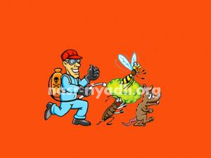 اماكن بيع المبيدات الحشرية في جدة